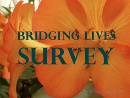 BL Survey